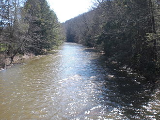 Catawissa Creek - Catawissa Creek in Zion Grove