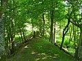 Causeway and footbridge - geograph.org.uk - 870473.jpg