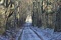 """Ceļš pie mājas""""Gromulti"""" - panoramio.jpg"""