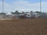 Cessnock rodeo