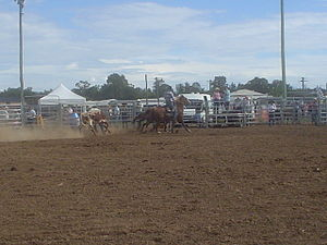 Cessnock, New South Wales - Rodeo at Cessnock showground