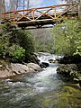 Chattooga River under Bull Pen Bridge - panoramio (1).jpg