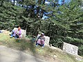 Chelela to Paro road views during LGFC - Bhutan 2019 (126).jpg