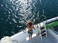 Child on Four Winds Snorkeling Charter Boat, Sue Salisbury Maui Hawaii - panoramio.jpg