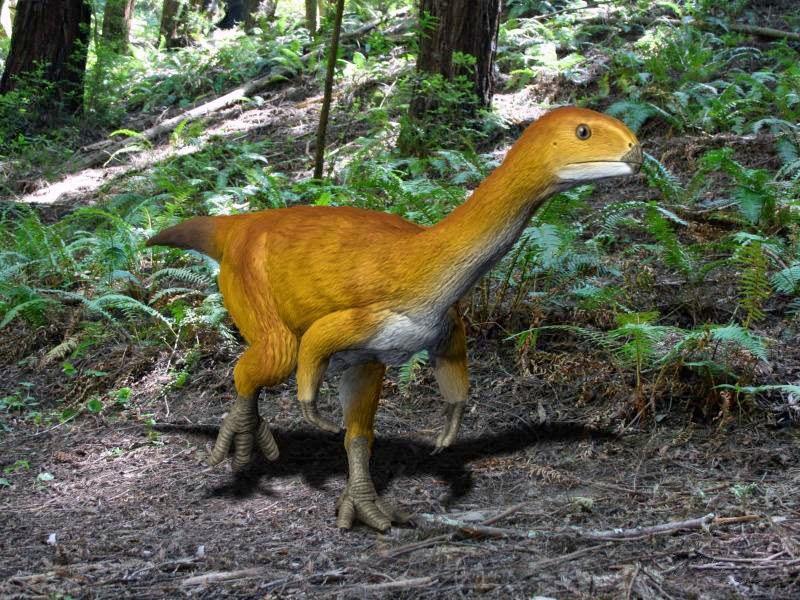 Chilesaurus NT small
