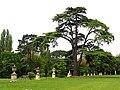 Chiswick House Gardens - geograph.org.uk - 8980.jpg