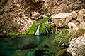 Chota Chotok-4.jpg