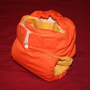 Pocket cloth diaper (insert goes in back) with...
