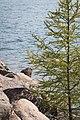 Cloud Bay Little Trout Bay, Ontario (14935278932).jpg