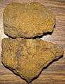 Coarse-grained sandstone (Allensville Member, Logan Formation, Lower Mississippian; Fallsburg North Outcrop, Licking County, Ohio, USA) (29683695662).jpg