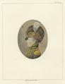 Col. Wade Hampton (NYPL b12349156-422689).tiff