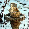 Cold birdbath (4238583128).jpg