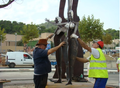 Colocación estatua.png