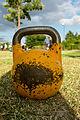 Competition kettlebell 16 kilo.jpg