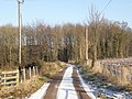 Country lane, Goodrich - geograph.org.uk - 1110601.jpg