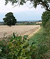 Countryside north of East Midlands Airport - geograph.org.uk - 557879.jpg