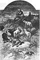 Cuentos de hadas (1883) (page 133 crop).jpg