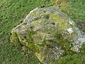 Cup marked rock, Blackhill - geograph.org.uk - 1506659.jpg