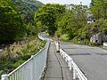 Dai 17 Chiwari Wainai, Miyako-shi, Iwate-ken 028-2105, Japan - panoramio (13).jpg