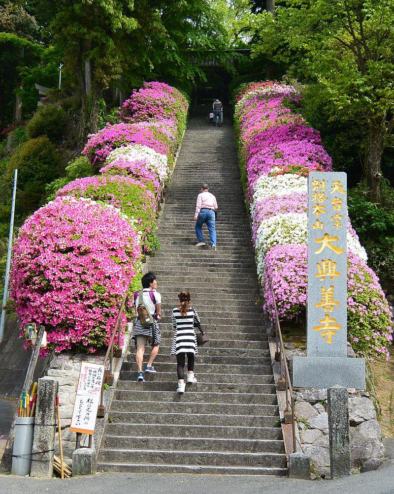 Daikouzenji temple Sando 01.JPG