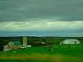 Dairy Farm near Fennimore - panoramio.jpg