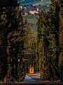 Dal Santuario di Puianello al Castello di Levizzano Rangone.jpg