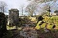 Dartmoor Way at Swincombe - geograph.org.uk - 993318.jpg