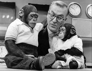Today (U.S. TV program) - Mascot J. Fred Muggs and companion with Garroway, 1954