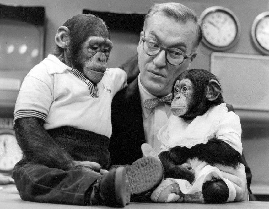 Dave Garroway J Fred Muggs Today show 1954