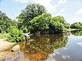 Davidson Mill Pond Park, South Brunswick, New Jersey USA July 15th, 2013 - panoramio (5).jpg