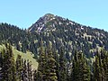 Dege Peak on Sourdough Ridge at Mount Rainier National Park.jpg