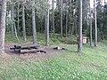 Degučiai, Lithuania - panoramio (19).jpg