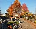 Dendermonde St-Gillis kerkhof 05.JPG