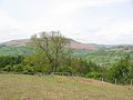 Descending the Sugar Loaf towards Llangenny - geograph.org.uk - 129260.jpg