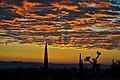 Desert Dawn.jpg