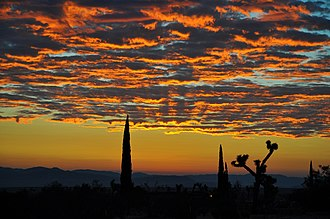 Dawn - Late summer dawn over the Mojave desert, California