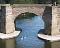 Detail of Wye Bridge - geograph.org.uk - 556256.jpg