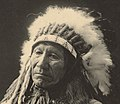 Detail of photo taken at the Trans-Mississippi and International Exposition, Omaha in 1898 of Chief American Horse (cropped).jpg
