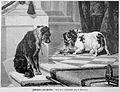 Die Gartenlaube (1888) b 861.jpg