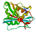 Dihydrofolate reductase 1DRF.png