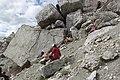 Dinosaur tracks on Monte Pelmo.jpg