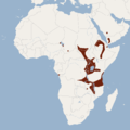 Distribution of Epomophorus labiatus.png