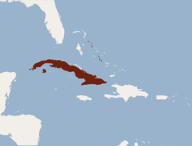 Distribution of Nyctiellus lepidus.png