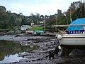 Dittisham - the western waterfront - geograph.org.uk - 269372.jpg