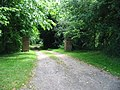 Driveway to Wentworth House - geograph.org.uk - 872969.jpg