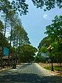 Duong vao khu di tich Go Thap, Tan kieu,Tháp Mười, Đồng Tháp, Việt Nam - panoramio.jpg