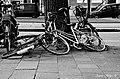 DutchPhotoWalk Amsterdam - panoramio (61).jpg