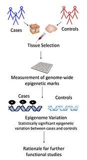 Epigenome-wide association study
