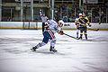 Edmonton Oilers Rookies vs UofA Golden Bears (15088680510).jpg