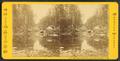 Emerald Pool, near Glen House, N.H, by Pease, N. W. (Nathan W.), 1836-1918 4.png